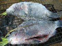Salt Crusted Thai Fish BBQ