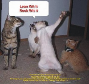 lean-with-it-rock-with-dancing-cats