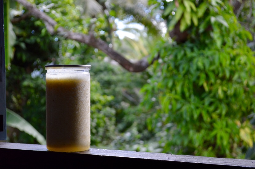 Pineapple Mango Smoothie.jpg